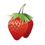 イチゴでダイエットと美肌