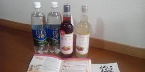 雪国美肌酵素液と優光泉(ゆうこうせん)との違いと選び方